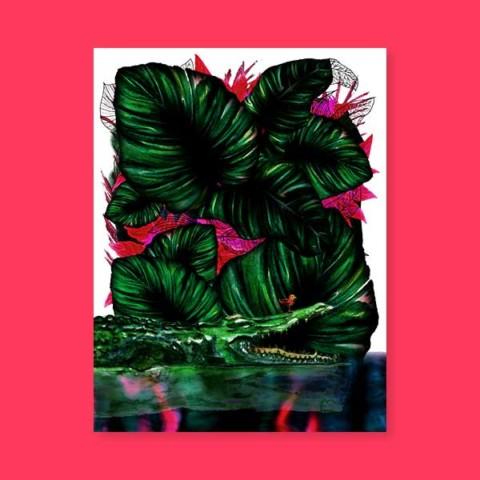Jungles – Le croco