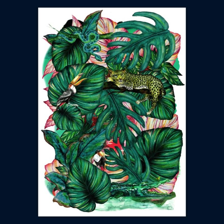 Jungles – Aie confiance – Juliette Seban – 100 exemplaires