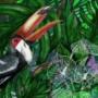 Jungles – Le toucan – Juliette Seban – 100 exemplaires