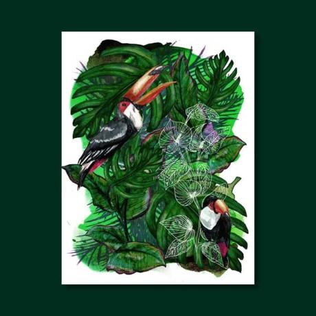 Jungles – Le toucan